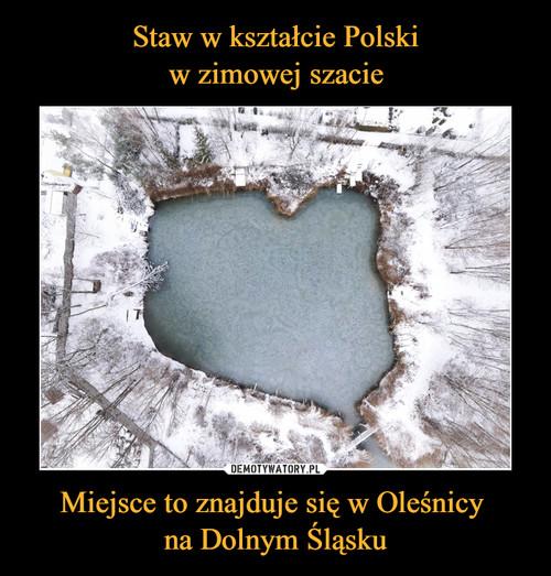 Staw w kształcie Polski w zimowej szacie Miejsce to znajduje się w Oleśnicy  na Dolnym Śląsku