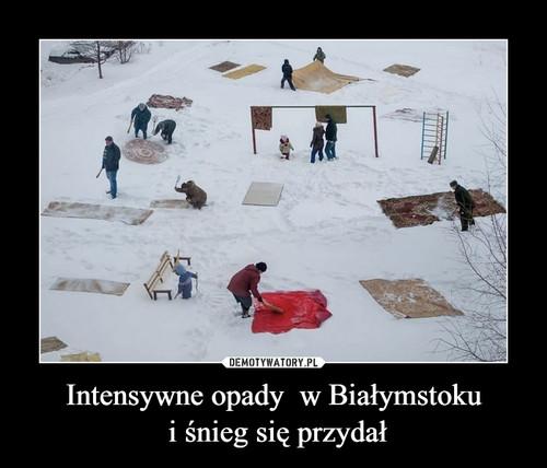Intensywne opady  w Białymstoku  i śnieg się przydał
