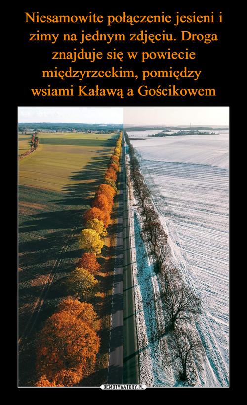 Niesamowite połączenie jesieni i zimy na jednym zdjęciu. Droga znajduje się w powiecie międzyrzeckim, pomiędzy  wsiami Kaławą a Gościkowem
