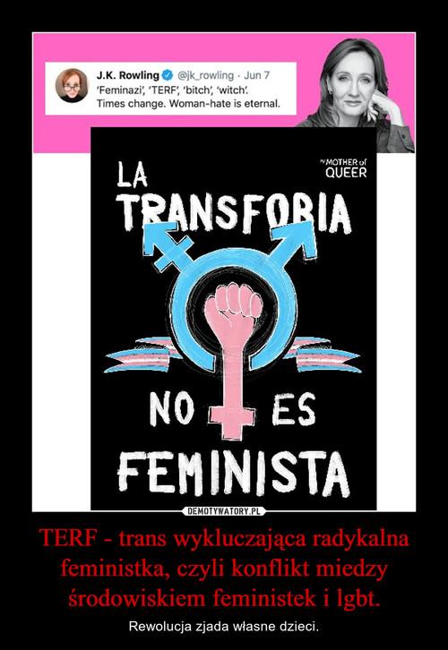 TERF - trans wykluczająca radykalna feministka, czyli konflikt miedzy środowiskiem feministek i lgbt.