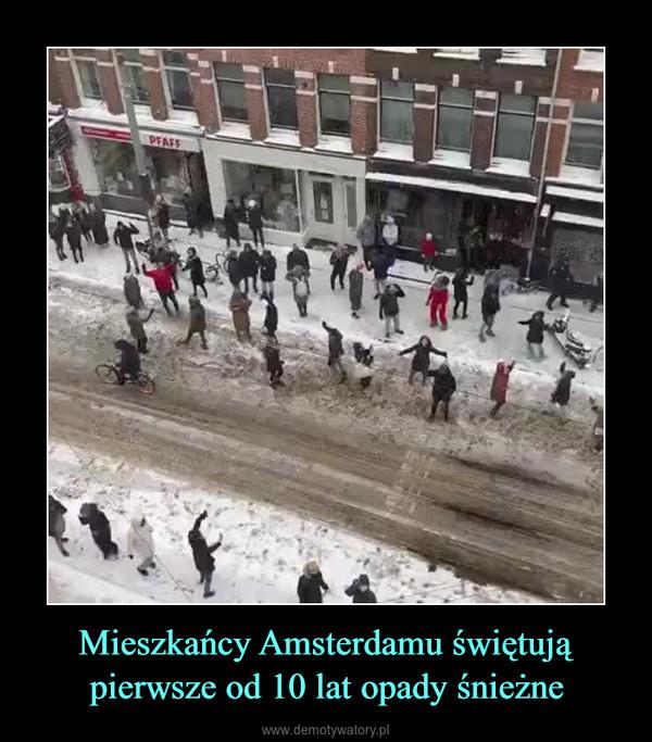 Mieszkańcy Amsterdamu świętują pierwsze od 10 lat opady śnieżne –