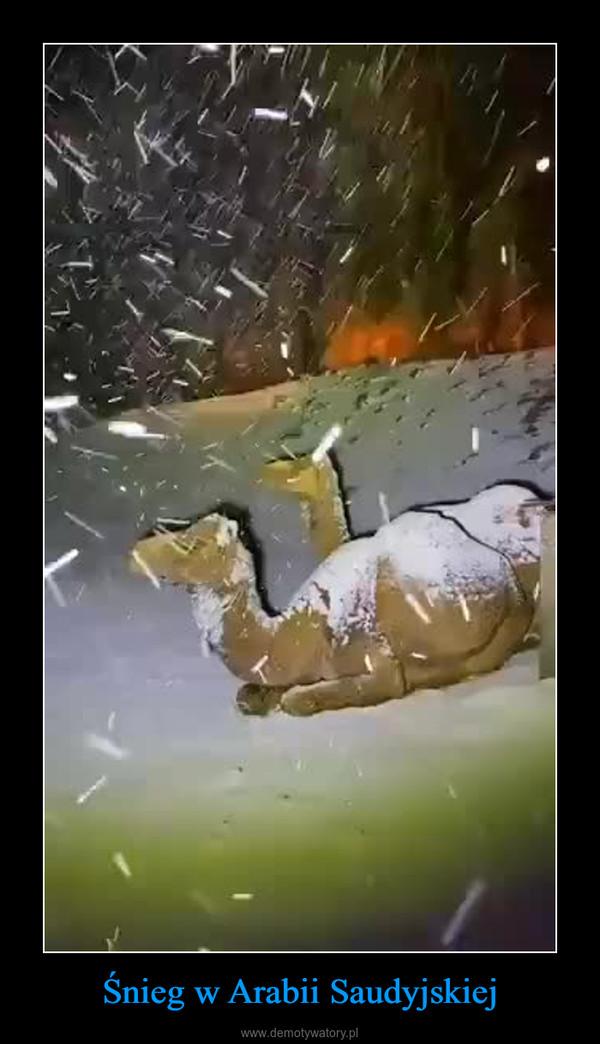 Śnieg w Arabii Saudyjskiej –