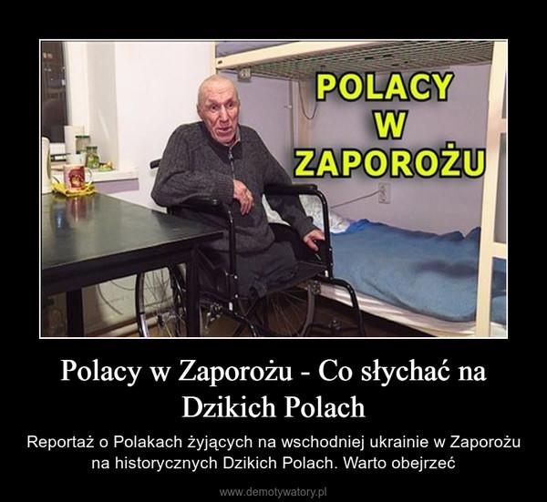 Polacy w Zaporożu - Co słychać na Dzikich Polach – Reportaż o Polakach żyjących na wschodniej ukrainie w Zaporożu na historycznych Dzikich Polach. Warto obejrzeć