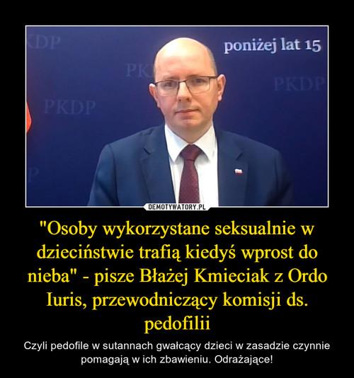 """""""Osoby wykorzystane seksualnie w dzieciństwie trafią kiedyś wprost do nieba"""" - pisze Błażej Kmieciak z Ordo Iuris, przewodniczący komisji ds. pedofilii"""