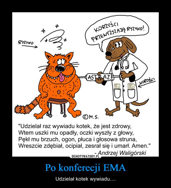 Po konferecji EMA – Udzielał kotek wywiadu....
