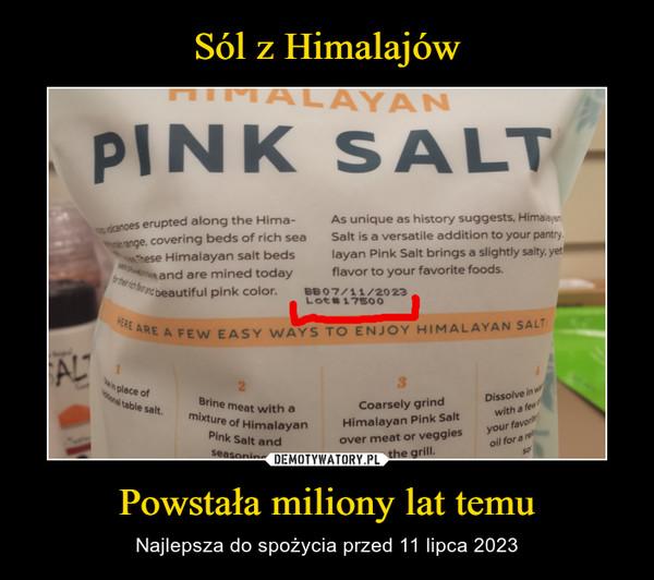 Powstała miliony lat temu – Najlepsza do spożycia przed 11 lipca 2023 pink salt