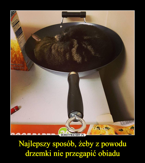 Najlepszy sposób, żeby z powodu drzemki nie przegapić obiadu –