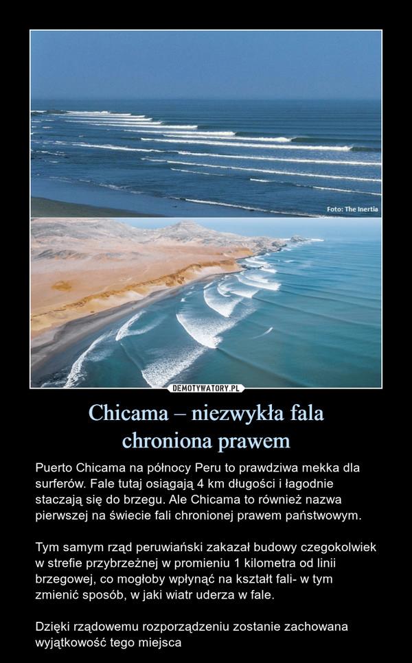 Chicama – niezwykła falachroniona prawem – Puerto Chicama na północy Peru to prawdziwa mekka dla surferów. Fale tutaj osiągają 4 km długości i łagodnie staczają się do brzegu. Ale Chicama to również nazwa pierwszej na świecie fali chronionej prawem państwowym.Tym samym rząd peruwiański zakazał budowy czegokolwiek w strefie przybrzeżnej w promieniu 1 kilometra od linii brzegowej, co mogłoby wpłynąć na kształt fali- w tym zmienić sposób, w jaki wiatr uderza w fale.Dzięki rządowemu rozporządzeniu zostanie zachowana wyjątkowość tego miejsca