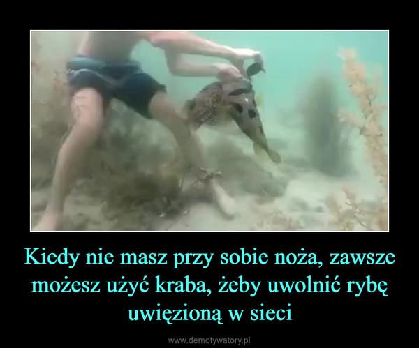 Kiedy nie masz przy sobie noża, zawsze możesz użyć kraba, żeby uwolnić rybę uwięzioną w sieci –