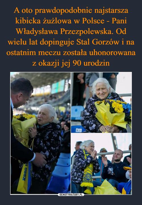 A oto prawdopodobnie najstarsza kibicka żużlowa w Polsce - Pani Władysława Przezpolewska. Od wielu lat dopinguje Stal Gorzów i na ostatnim meczu została uhonorowana z okazji jej 90 urodzin