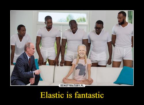 Elastic is fantastic