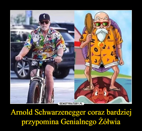 Arnold Schwarzenegger coraz bardziej przypomina Genialnego Żółwia –