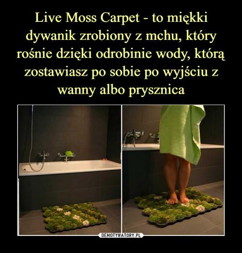 Live Moss Carpet - to miękki dywanik zrobiony z mchu, który rośnie dzięki odrobinie wody, którą zostawiasz po sobie po wyjściu z wanny albo prysznica