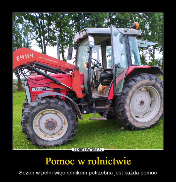 Pomoc w rolnictwie