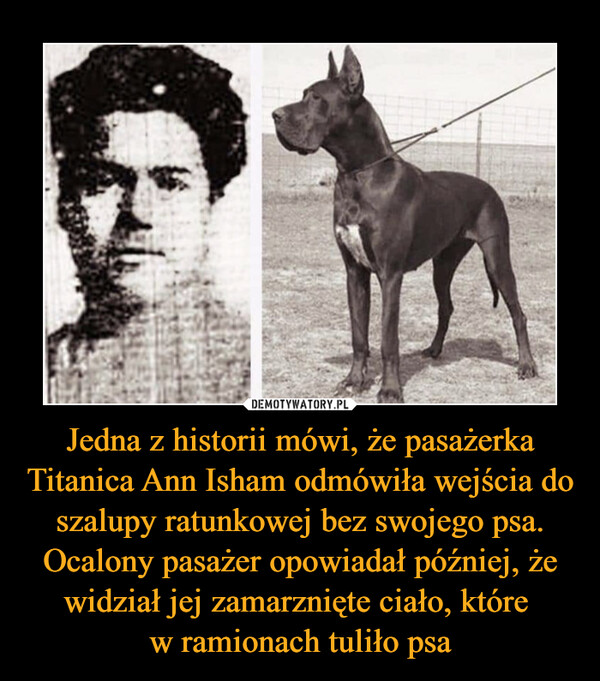 Jedna z historii mówi, że pasażerka Titanica Ann Isham odmówiła wejścia do szalupy ratunkowej bez swojego psa. Ocalony pasażer opowiadał później, że widział jej zamarznięte ciało, które w ramionach tuliło psa –