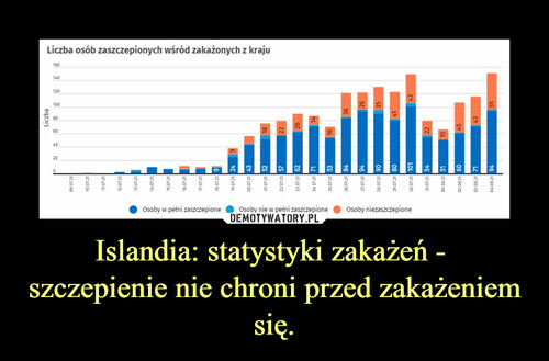 Islandia: statystyki zakażeń -  szczepienie nie chroni przed zakażeniem się.