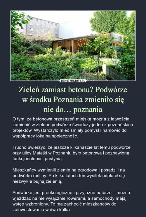 Zieleń zamiast betonu? Podwórze w środku Poznania zmieniło się nie do… poznania