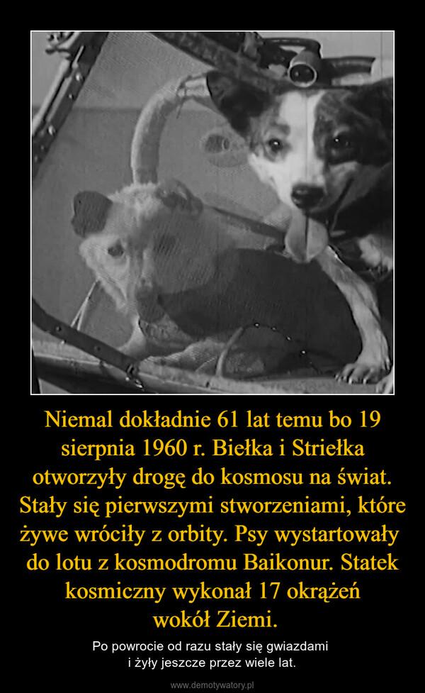 Niemal dokładnie 61 lat temu bo 19 sierpnia 1960 r. Biełka i Striełka otworzyły drogę do kosmosu na świat. Stały się pierwszymi stworzeniami, które żywe wróciły z orbity. Psy wystartowały  do lotu z kosmodromu Baikonur. Statek kosmiczny wykonał 17 okrążeń wokół Ziemi. – Po powrocie od razu stały się gwiazdami i żyły jeszcze przez wiele lat.