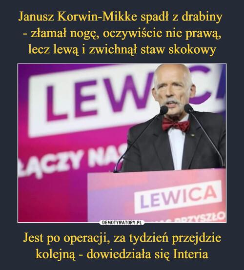 Janusz Korwin-Mikke spadł z drabiny  - złamał nogę, oczywiście nie prawą, lecz lewą i zwichnął staw skokowy Jest po operacji, za tydzień przejdzie kolejną - dowiedziała się Interia