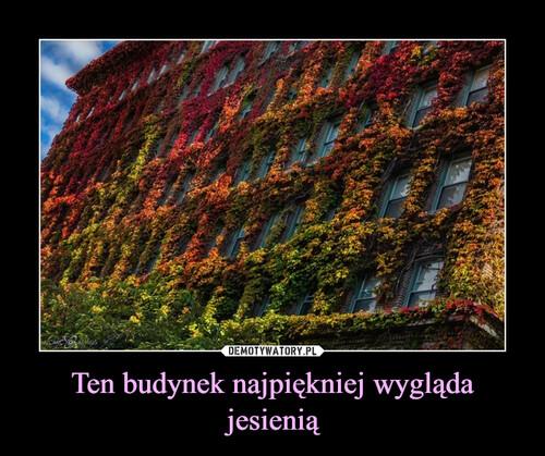 Ten budynek najpiękniej wygląda jesienią