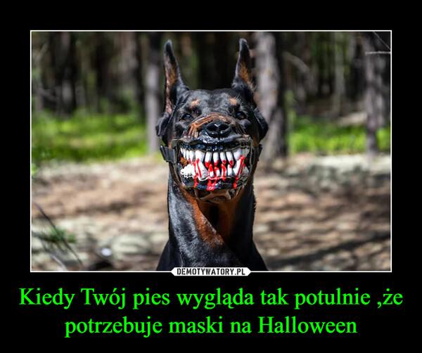 Kiedy Twój pies wygląda tak potulnie ,że potrzebuje maski na Halloween –