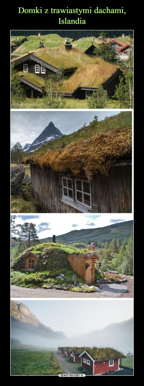 Domki z trawiastymi dachami, Islandia