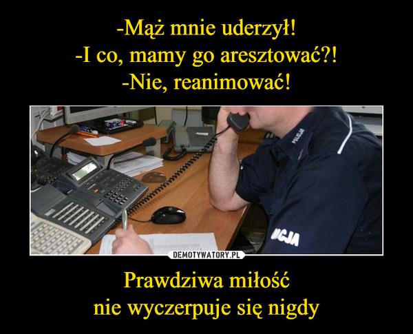 1546027035_rw82b8_600.jpg